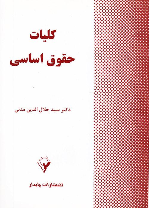 کلیات حقوق اساسی, جلال الدین مدنی, پایدار