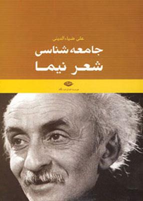 جامعه شناسی شعر نیما, ضیاء الدینی, نگاه